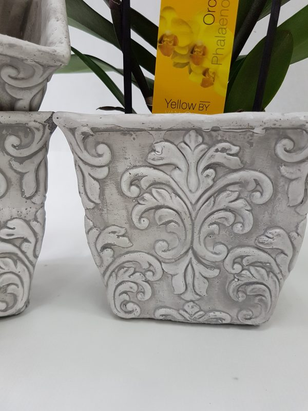Contenant Orchidée Amboise
