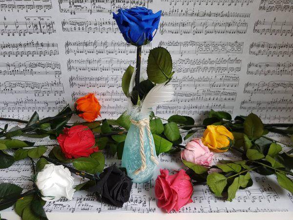 Roses éternelles